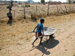 Az utolsó morzsák is eltűnnek Afrika kenyeres kosarából