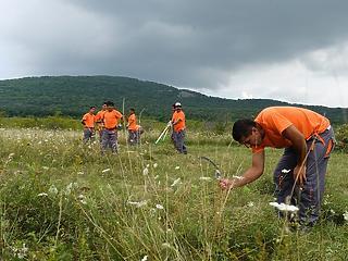 Dolgozó közmunkások ezreire bukkant a kormány - megváltozott a módszertan