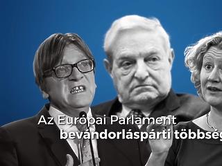 A Sargentini-jelentést lehazugozó kampányt indított a kormány, a Momentum tájékoztató szórólapokkal válaszolt Budapesten
