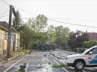 Betört az országba az ősz, Budapesten kidőlt fák és leszakított ágak jelzik útját