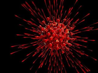 Újabb koronavírusos-fertőzött és halott