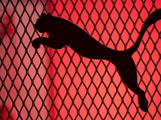 Elég oroszlán negyedévet zárt a Puma