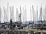 Tizenegy kikötőt árul a Balatoni Hajózási Zrt.