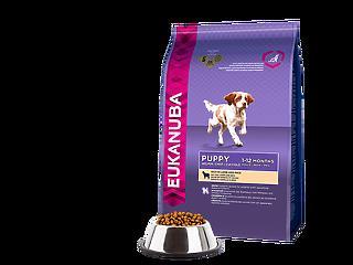 Eukanuba kutyatáppal egy szebb kutyaéletért!