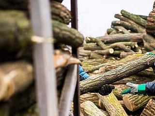 88 háznál várnak Felcsúton a téli rezsicsökkentésre