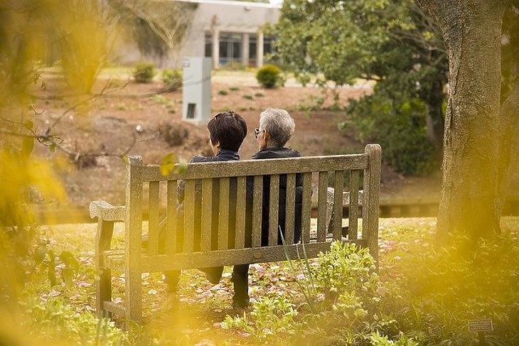 A látogatás ismét maszkban, és sokszor a kertben történik majd. Fotó: Pixabay