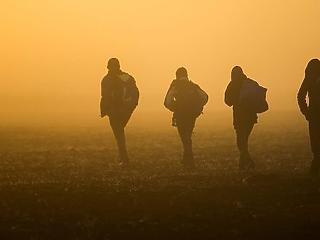 Bakondi György szerint egyre aktívabbak az embercsempészek a magyar határnál