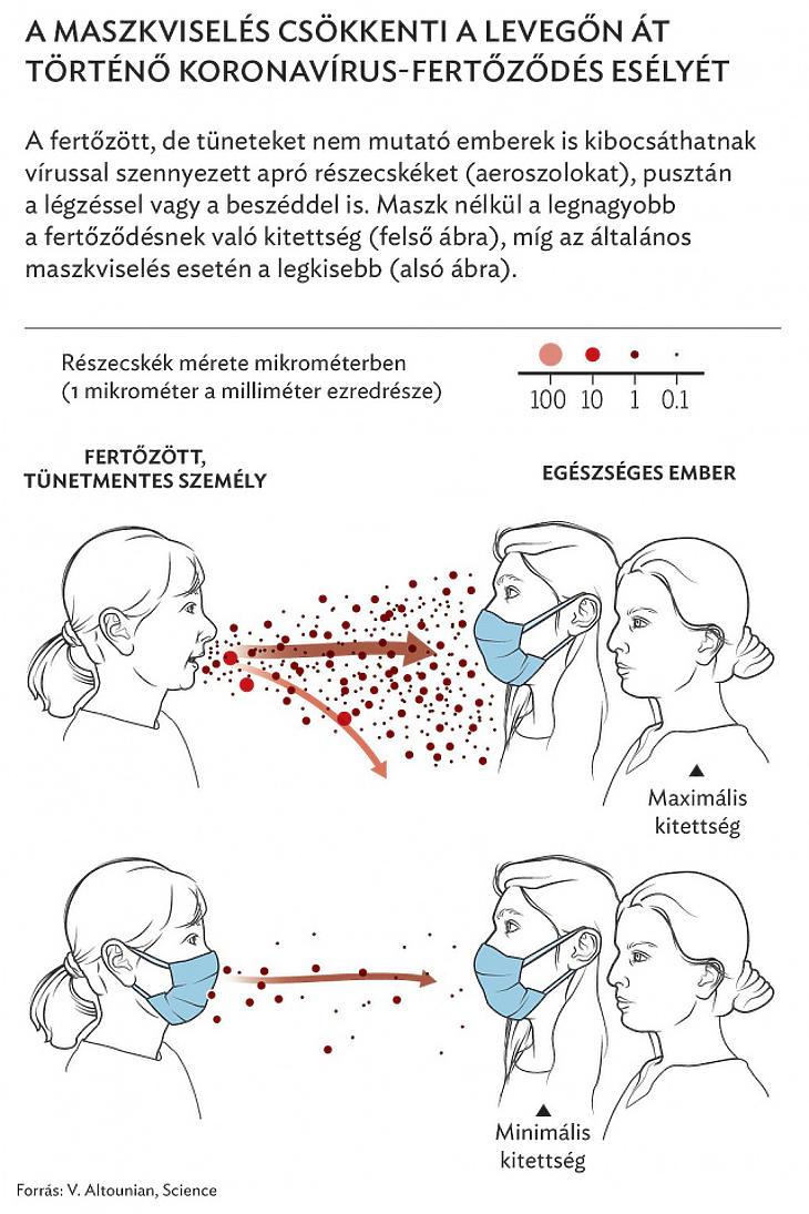 Az MTA tanácsai a maszkviselés hasznosságát illetően (Forrás: MTA)