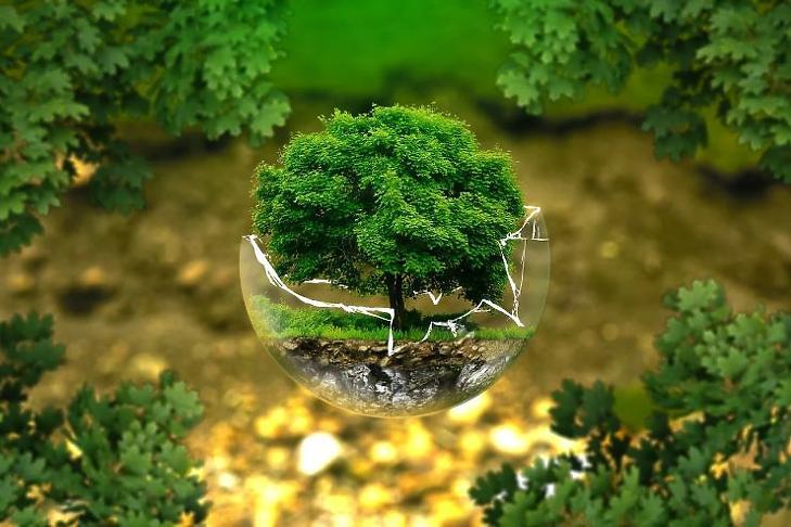 A befektetéseknél is fókuszban a fenntarthatóság (Forrás: pixabay.com)