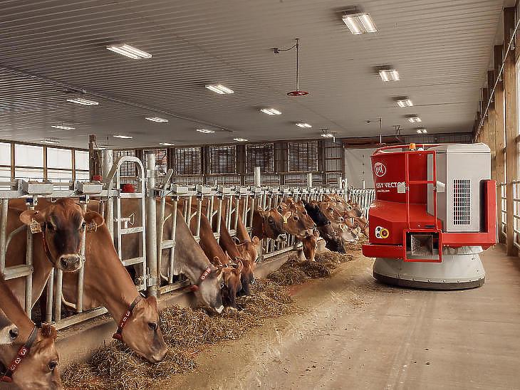 Robotizált tehénetetés az amerikai Rivendale Farmson, Pittsburgh közelében. (Fotó: Ross Mantle / The New York Times)