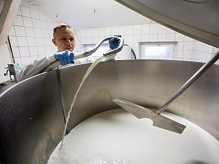 4,7 milliárdos mozzarella-üzem épül Bartusekpusztán