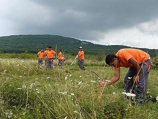 Mérföldkő: idén először 4,5 millió felett a dolgozó magyarok száma
