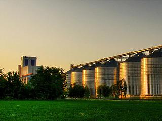 9 milliárdos beruházás a Bunge martfűi gyárában