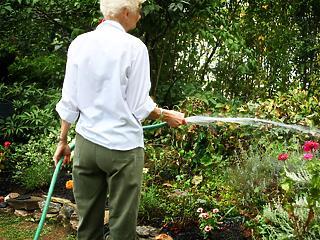 Ingyenessé válhat a kerti kutak engedélyeztetése