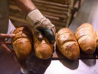 10-15 százalékkal drágulhat a kenyér