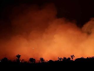 Azonnali 20 millió dolláros segélyt küldenek a G7-ek az amazóniai tüzek megfékezésére