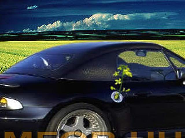 bioüzemanyagé a jövő