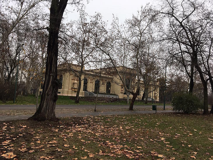 Olof Palme Háza