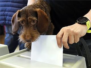 Nem lanyhul a szavazókedv, itt az újabb részvételi rekord