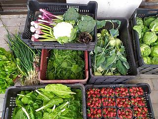 Ki jár jól, ha drágul a zöldség és a gyümölcs