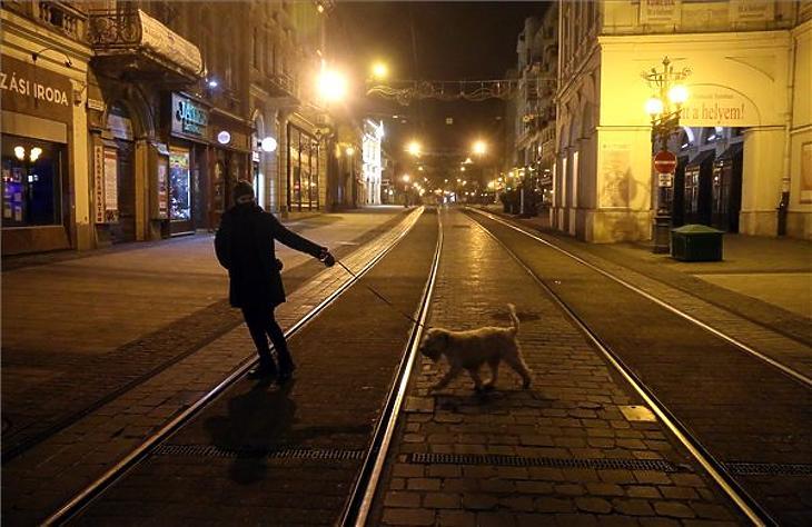 Kutyát sétáltat egy nő a miskolci Széchenyi utcában a kijárási tilalom idején 2020. november 14-én este. A lakóhely 500 méteres körzetében az ilyesmi a tilalom idején is szabad. (Fotó: MTI/Vajda János)