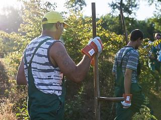 85 ezer embert az út szélén hagy az Orbán-kormány