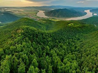 3,5 milliárd forintból fejlesztik a hazai erdőket