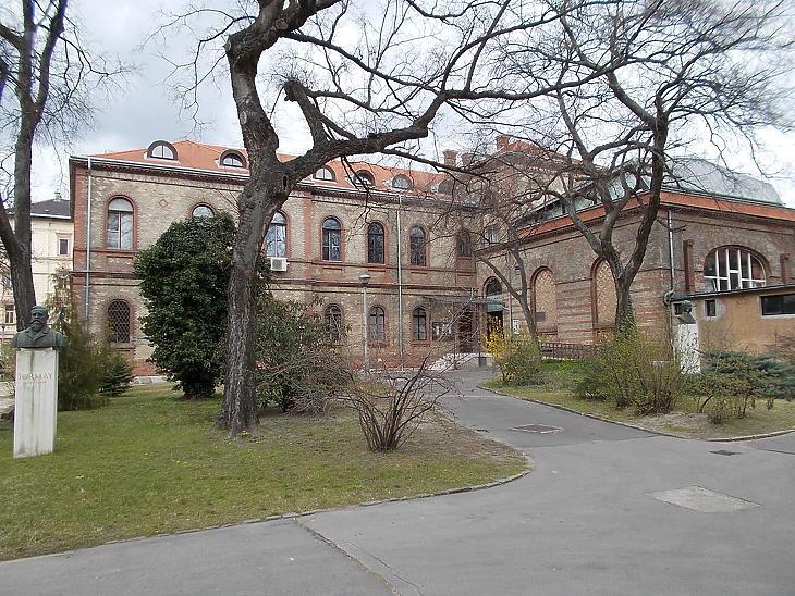 Az Állatorvosi Egyetem hat ingatlant kap az államtól. Fotó: Wikimedia