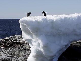 Hatszorosára gyorsult az Antarktisz olvadása az elmúlt 40 évben