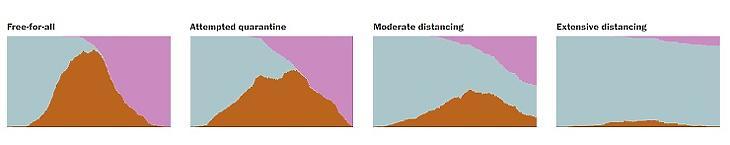 A 4 lehetséges forgatókönyv: 1. nem történik semmi, 2. Karantén mozgáskorlátozás nélkül, 3. A mozgás mérsékelt korlátozása, 4. A mozgás radikális korlátozása, a nyilvános helyek bezárása (Animáció: Washington Post)