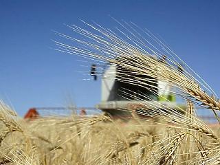 Az agrárköltségvetés 40 milliárddal hízik