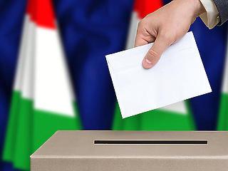 Pállfy Ilona: Pusztán adminisztratív hibák történtek a választás során