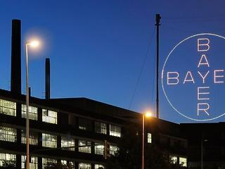 Minden tizedik dolgozóját kirúgja a Bayer