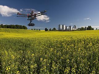 Hogyan hozhat forradalmat a mezőgazdaságban az 5G?