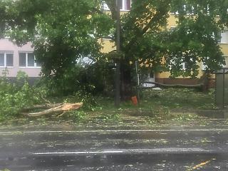 Félmilliárd forintot meghaladó kárt okozhattak a hétvégi viharok