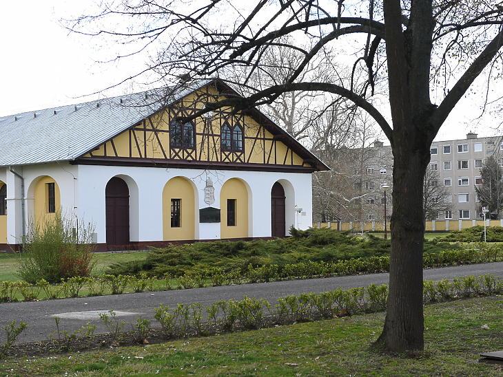 Mezőhegyesi Ménesbirtok (Fotó: Bánkuti András)