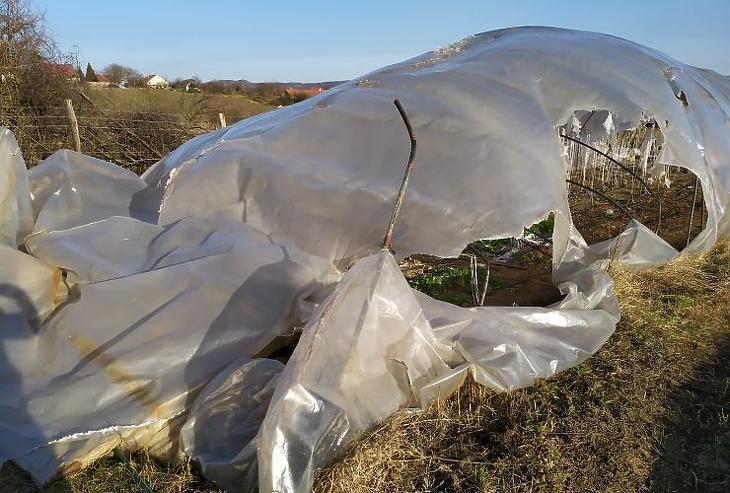 A vihar a gazdáknak okozott károkat, de az árakban nem feltétlen jelentkezik