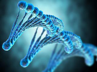 DNS alapú vakcinát engedélyeztek Indiában