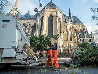 Temérdek munkát kínál a budapesti hulladékszállító
