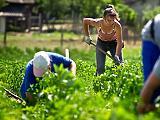 Kedvezőtlen fordulat: szűkül a magyar munkaerőpiac