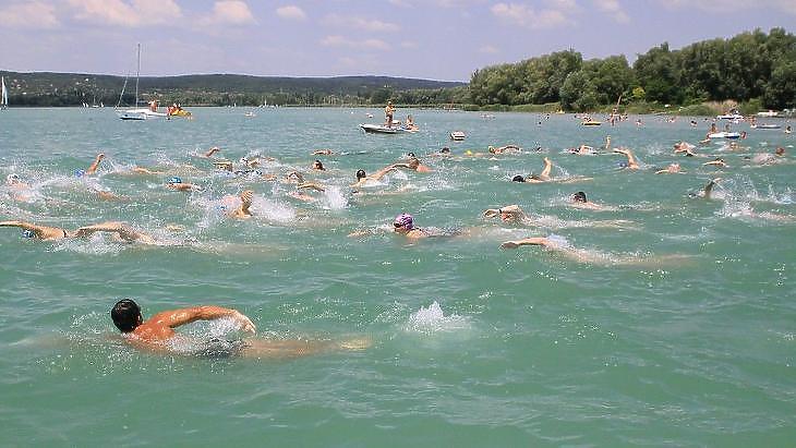 Idén féltávot is lehet úszni a Balatonon augusztus 1-jén. Fotó: mti