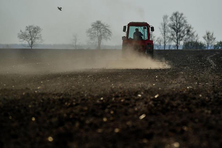 Porzik a szárazságtól a magyar termőföld 2019 tavaszán. (Fotó: MTI / Czeglédi Zsolt)