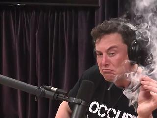 Elon Musk a barátnőjét akarta megnevettetni abban a twittben, amibe most belebukhat