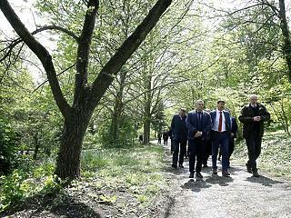 Még 7 milliárd forintot ítéltek oda erdősítésre