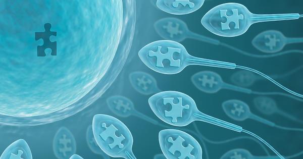 Fokozódó férfimeddőség: spermiumdeficitre jött a COVID-19