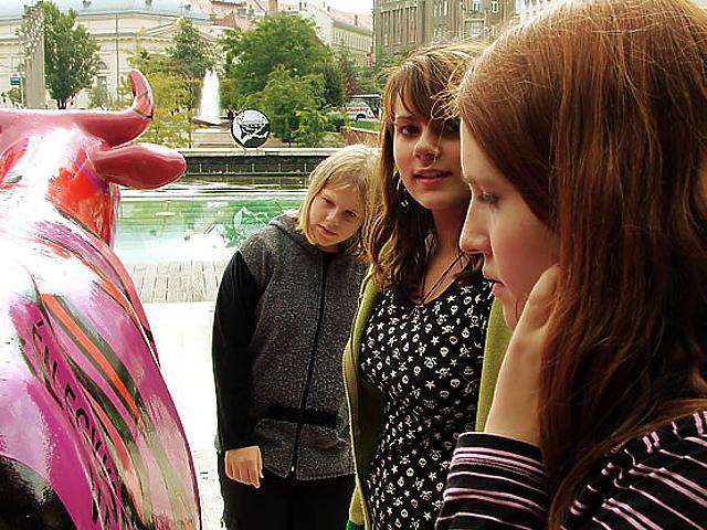 Parádés tehenek az Erzsébet téren