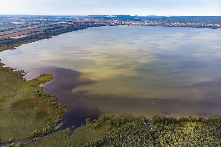 Algafoltok a Balatonon a Zala folyó torkolatánál, Keszthely külterületi településrésze, Fenékpuszta közelében 2019. szeptember 11-én. (Fotó: MTI/Varga György)