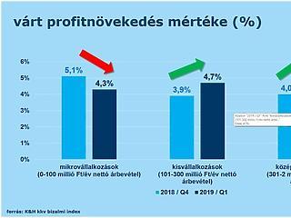 Lassulú árbevétel-növekedésre, de növekvő profitra számítanak a kkv-k