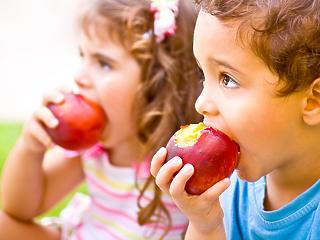 Napi 100 millió baktériumot kell megennünk ahhoz, hogy egészségesek legyünk