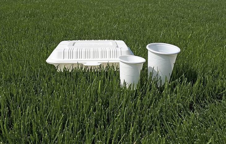 CPLA doboz és pohár (Fotó forrása: Indepack)